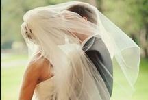 Wedding Day / by Jacqui Regener