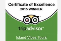 Trip Advisor Certificate of Excellence / Thank you!