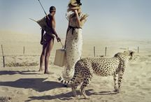 Photography of Tim Walker