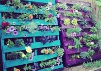 GARDEN SPACES / Garden inspo for the amateur gardener!