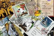 Postcrossing postcards