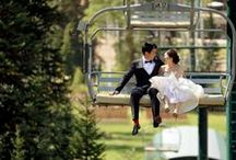 Rocky Mountain Wedding Ideas / Everything you need to plan your Rocky Mountain Wedding, invitations, flowers, cakes, venues, photo shoot ideas....