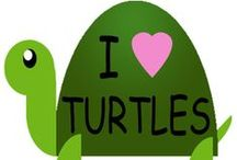 I Love Turtles :) xxx / I Love Turtles :D lots and lots xxxxx