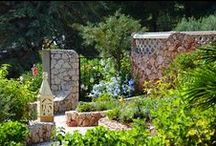 An Algarve Garden / A selection of flowers and plants from the Algar Seco Parque gardens.