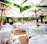 Wedding Venues / Find the perfect place to have your wedding!