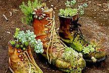 Garden-Magical