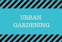 Urban Gardening / If you don't have the space for a backyard garden, check out these pins of beautiful and creative ways to maximize your garden space indoors, on balconies and decks.  You'll also find lots of gardening advice on growing your own fruits and vegetables!