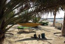 Jennifer Bill in Dubai / This is the Dubai I saw on holiday.