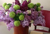 Bouquet de fleurs / Les bouquets des fleurs de mon jardin