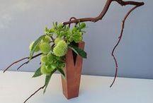 Ikebana e Bonsai / antica arte floreale