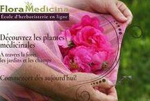 Nos cours en ligne en français | FloraMedicina