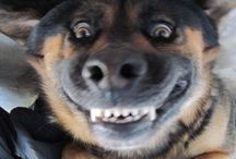make me smile!