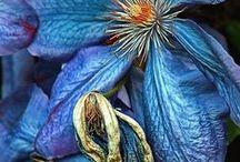 green/bleu/jade flowers
