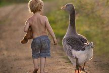 Animals & children
