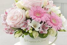 Arreglos florales/ Flowers arrangements
