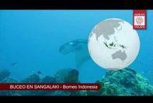 Vídeos de viajes por todo el mundo / Vídeos de nuestros viajes y viajeros alrededor de todo el mundo. Asia, América, Oceanía y Europa.