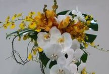 Orchids in Weddings / A range of wedding bouquets incorporating orchids
