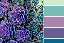 Color Palette / Colors: Copper, dusted blue or slate, some shade of purple, white