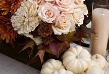 Fall / by Holly Cunningham