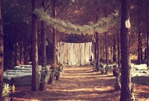Enchanted Forest Wedding / Enchanted forest fairy tale weddings.