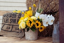 Sunflower Weddings / Bright yellow sunflower weddings.