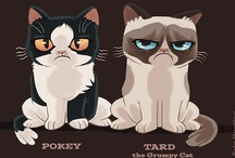 Grumpy Cat & other grumps!!