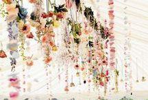 wedding  / by Molly Gancarz