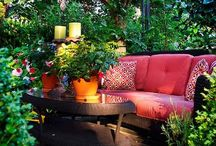 Garden and Outdoor places / Sunny and cozy garden and outdoor home ideas.
