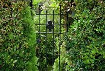 GARDEN - GATES / FENCES / Feel free to copy photos uploaded by The Essence of the Good Life™ to your own Pinterest page ore other pages. But you are not allowed to remove or change the text/links below the images. Thank You!