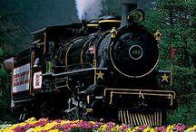 Vlakom