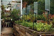 Hortas e Jardins