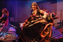 INDIA / Rajasthani dances