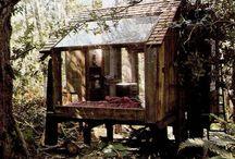 Case nel bosco / Case nel bosco