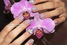Nails Artist Zinia / Nails