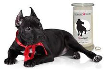 Companion Candles / Our brand new line of Jewelry Candles with all your favorite breeds of dogs , cats and pets on them!