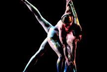 Q Dance, Royal Winnipeg Ballet