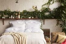 Rooms / dorm rooms, twinkle lights, etc / by Amanda Oswell