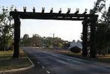 my town Manjimup Western Australia
