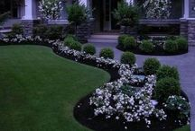 Curb Appeal / by Cheryl Wade Madott