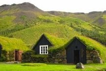 Green Roofs / Plants and grass growing on roofs