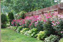 gardening / by Elizabeth Vaughan Ambrose