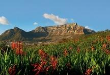 SA natural heritage