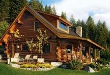 cabin / by Elizabeth Vaughan Ambrose