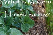 DIY -- Homesteading --- Etc. / A mix of Do-it-Yourself, Re-Purposing, modern/urban Homesteading, Disaster Preparedness, and things we can all incorporate into our Lifestyles to help us become more self-sufficient.