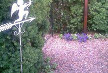 The Secret Garden / Mijn persoonlijke bos- tuin.