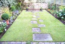 Garden/Tuin