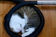 Dormir en toutes circonstances