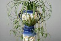 Garden ❀ U R N S & Planters / urns in the garden / by rebecca mock