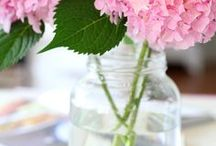 DIY Backyard Florist / Easy floral arrangements that anyone can do, with flowers you're likely to have in your backyard.  Ideas for parties, weddings, christmas and just because!