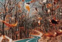 ↠ AUTUMN MOOD ↞ / Herbst, Kälte, Kuscheln, Wollpullis, Tee, Gemütlichkeit - Autumn & Fall Mood for cosy days.